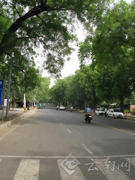 高清组图 印度德里街景图片