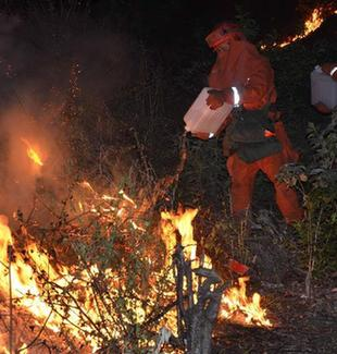 云南安宁森林火灾仍在扑救